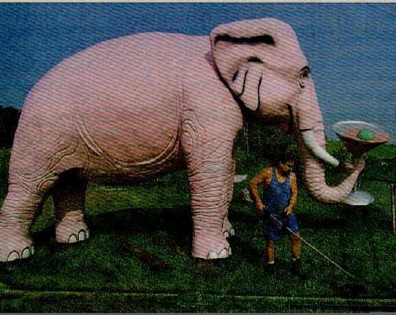 Famous Pink Elephant